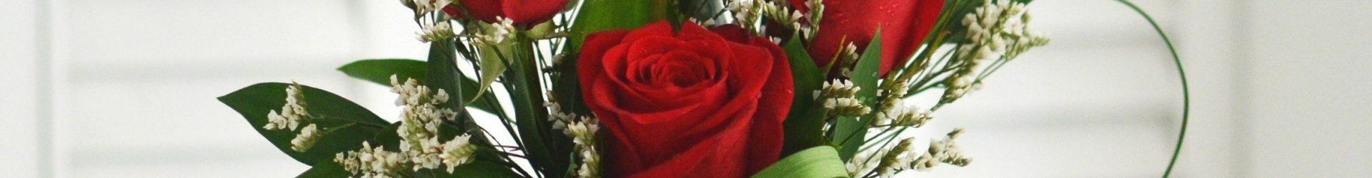 6 crvenih ruža