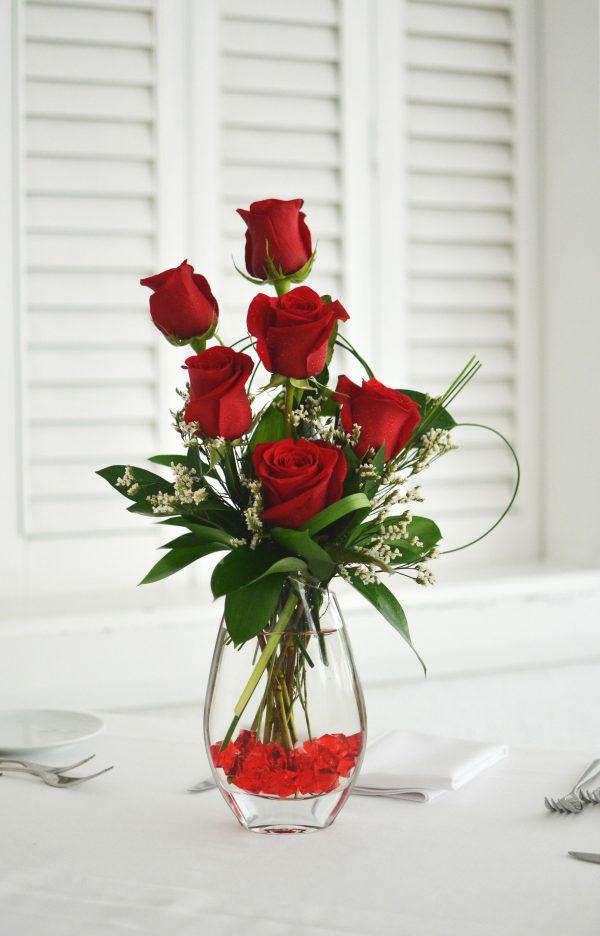 ruže u zagrebu