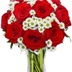 ruže i margaretice bilo gdje u zagrebu