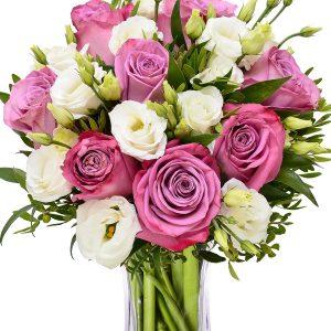 nježne ruže za dostavu bilo gdje u zagrebu