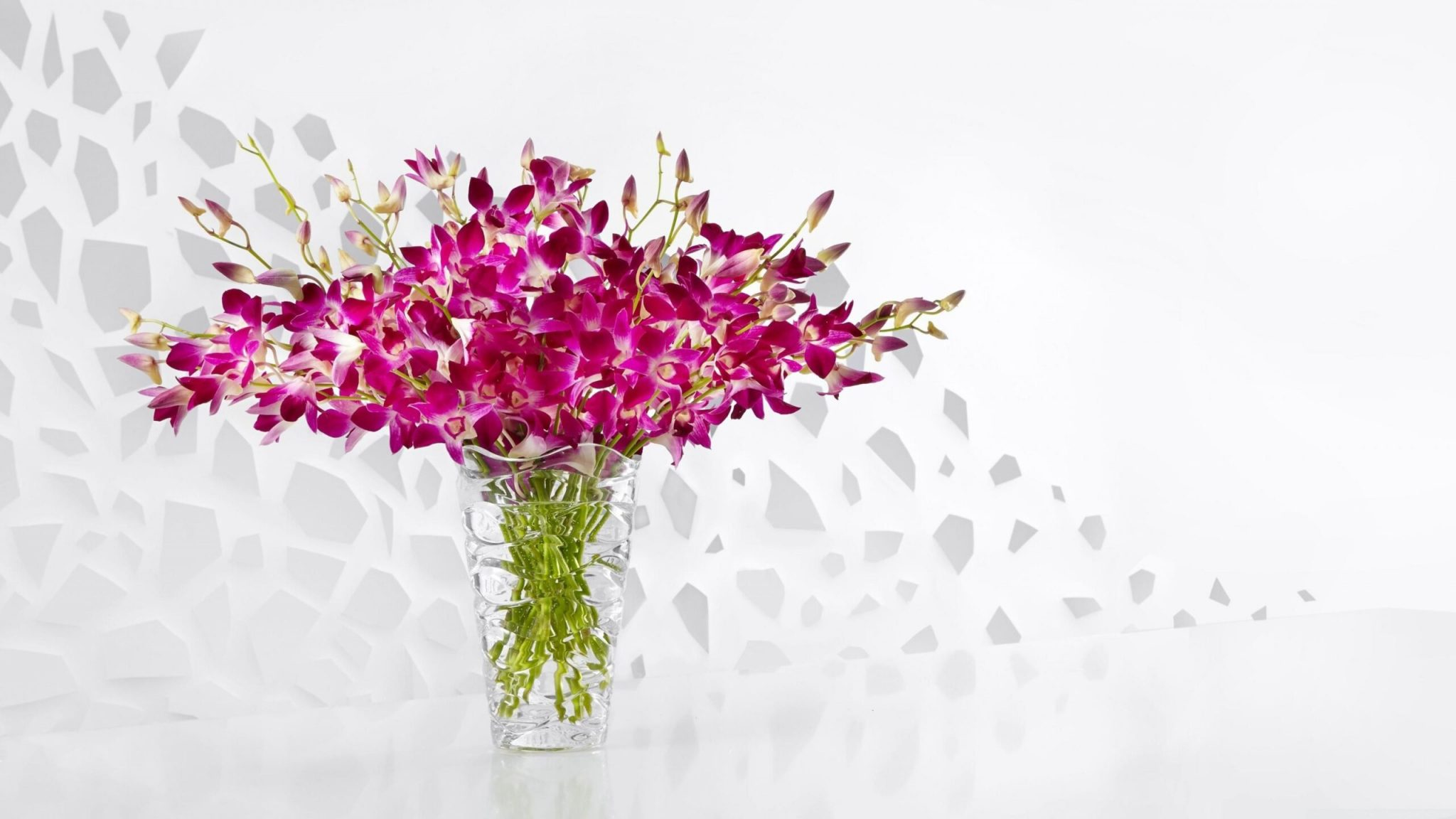 cvjećarna sesvet zagreb