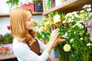 cvjećara novo sarajevo dostava